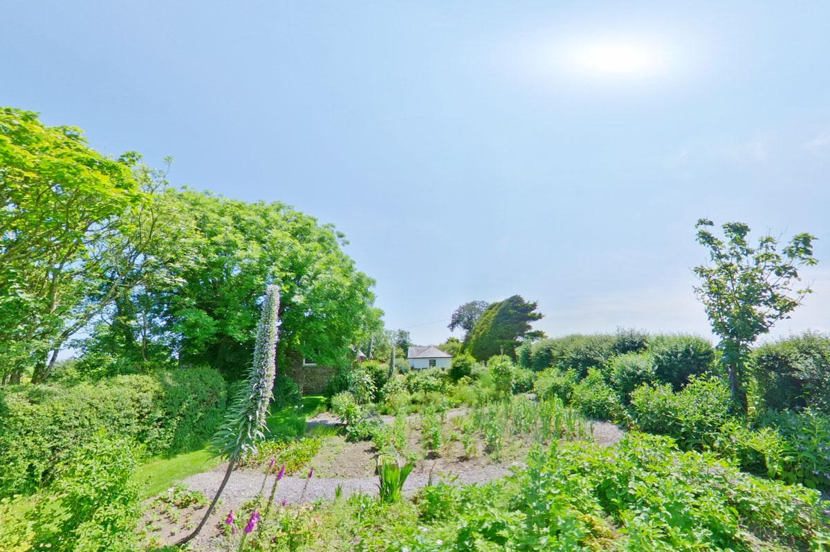 39_Vegetable Garden