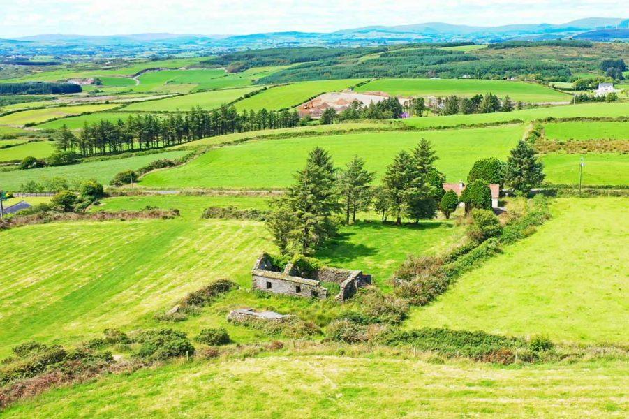 10_Derelict Farmhouse