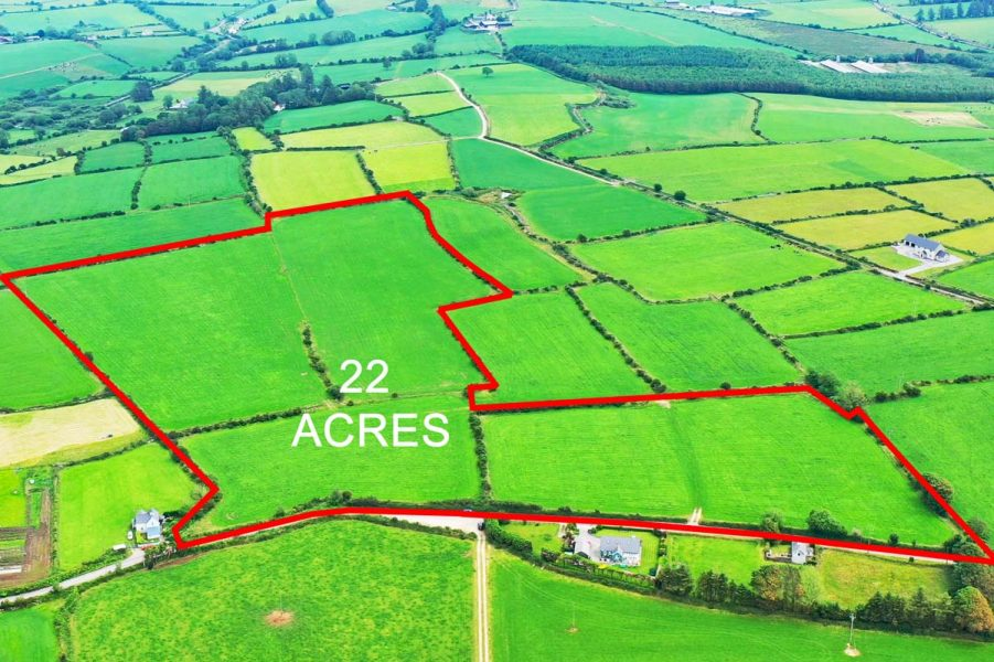 3_Coorleigh 22 Acres